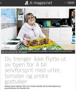 Skjermdump fra Aftenposten.no