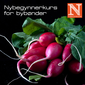 nybeg-bybonder